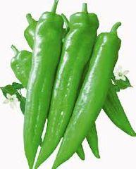 Veg. Long greenPepper 1 lb 牛角椒1磅袋