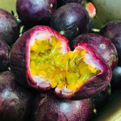 Purple Passion Fruits 台湾紫色百香果8颗袋
