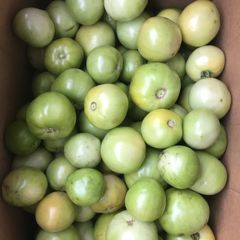 Okanagan Green Tomatoes 25lbs