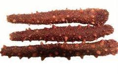 Alaska wild dry sea cucumber 1lb/bag 中国门到门直送-全干阿拉斯加野生红刺参中号(15-22根)1磅/袋