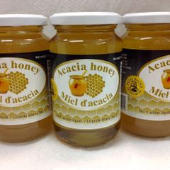 RO_Honey Bear Acacia Honey 500g (No shipping Pick-Up Only)