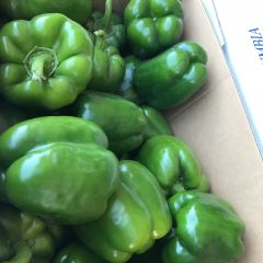 Local larger green peppers 20lbs box