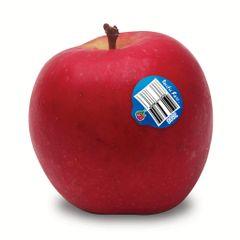 Pacific rose apples 8 pcs 特大红玫瑰苹果8颗礼品盒