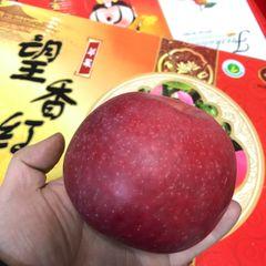 Wangxianghong Apple Box 【甜脆香】特大望香红苹果礼品盒
