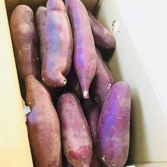 Veg_Japanese Purple Yam 3 lbs bag 日本产日本紫皮大番薯4磅袋