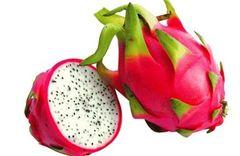 Australian Dragon Fruits 【空运新到】澳洲精品白肉火龙果2颗