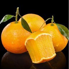Jelly Oranges 【香甜细腻/嫩若果冻/汁如涌泉】爱媛38果冻橙(满分推荐!)