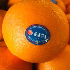 Sky valley Oranges 甜橙 Sky Valley
