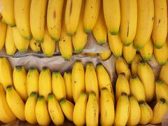Pro.o_Bakery Organic Bananas organic 40lbs Case 有机熟香蕉40磅箱