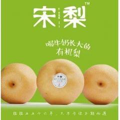 Organic Song Pear 新鲜有机宋梨两颗