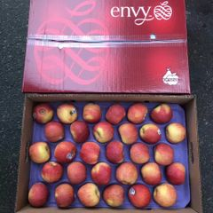 Washington Organic Envy apple 华盛顿有机爱妃苹果