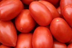 Veg_Okanagan Roma Tomatoes 奥克纳根罗马西红柿