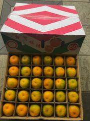 Taiwan mandarin Oranges 10 pcs台湾椪柑10颗