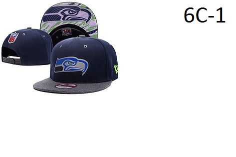 NFL Football Snapback Hats Catalog 6C