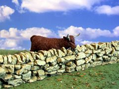 "C08A 6"" Stone Wall by JG Miniatures 1:32 scale"