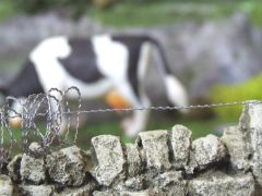 5 Meters Barbed Wire Fence 1:32 scale by HLT FB040
