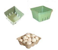 Berry / Veggie Boxes | Pint | Quart