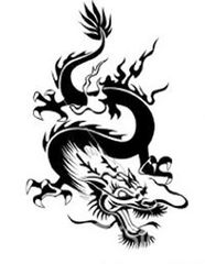 Nine Blend Black Dragon Black Tea