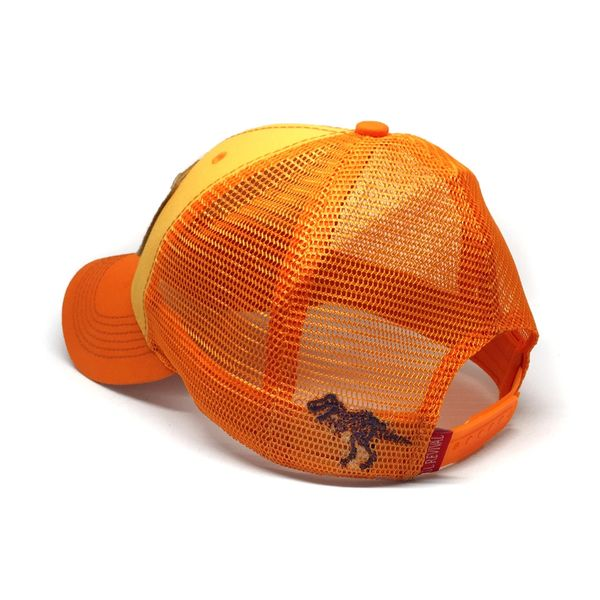 8a5e3c946de Everyday Trucker Hat