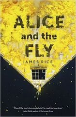 Alice and the Fly by James Rice