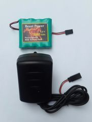 Receiver Pack 2800mAh 4.8v NICD with charger