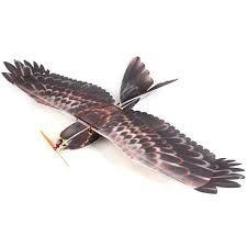 Aeromodellingtutor RC Bird 3 Channel