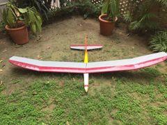 Carl Goldberg Gentle Lady Glider