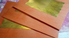 Joss Regal orange (10)