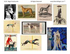 3118 Regal Greyhounds