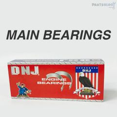 Main Bearing Set (DNJ MB534) 09-13