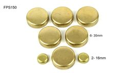Frost Plug Set - Brass (DNJ FPS150) 95-05