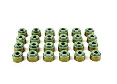 Valve Stem Seal Set (DNJ VSS727) 05-15