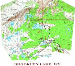 Brooklyn Lake, Wyoming Topographic Map Shirt