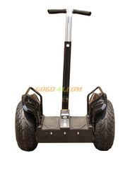19-inch App controlled GoGosegway, brown