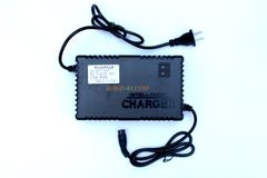 48V 4AMP Lithium ION battery charger