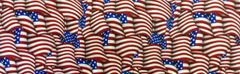 Henry Glass and Co. Flag Welcome Home Fabric