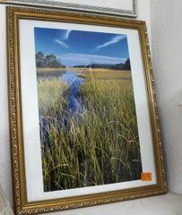 Wetlands Gold Framed Photo