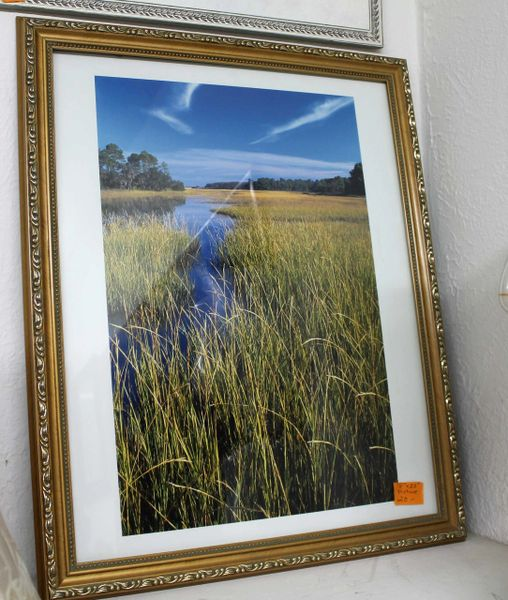 Wetlands Gold Framed Photo