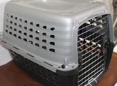 Medium Size Petmate Animal Carrier Kennel