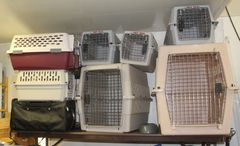 Assortment of Animal Kennels Many Sizes and Styles