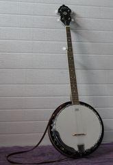 Bean Blossom (By Morgan Monroe) 5 String Banjo