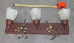 3 Light Fixture w/ Glass Shades