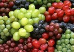 Grapes (1 bunch)