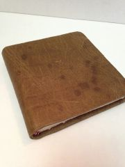 Brown Leather with Spots