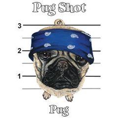 Pug Shot - Pug - T-shirt