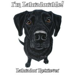 I'm Labradorable - Black Labrador - T-shirt