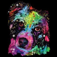 Border Collie - Neon - Sweatshirt