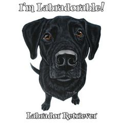I'm Labradorable - Black Labrador -Sweatshirt