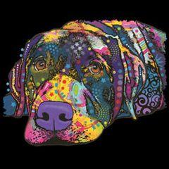 Savvy Labrador - Neon - T-shirt