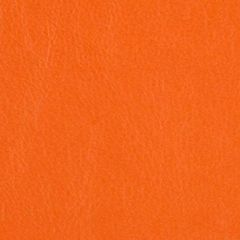 Orange Tent Sidewalls